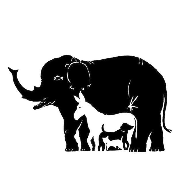 Картинка со слоном сколько животных