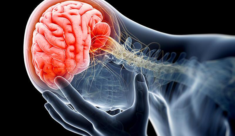 гормон роста защищает людей от травм