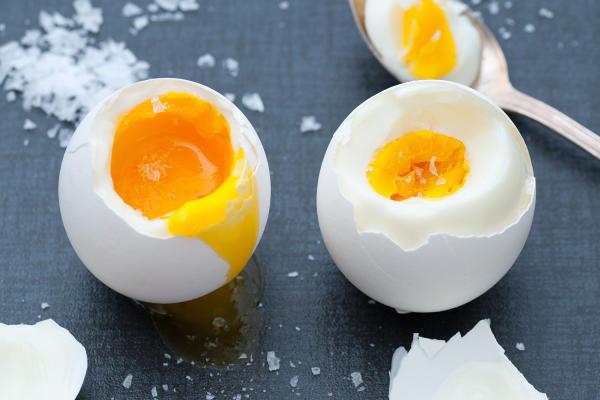 Миф о яйце верен - по крайней мере, теоретически