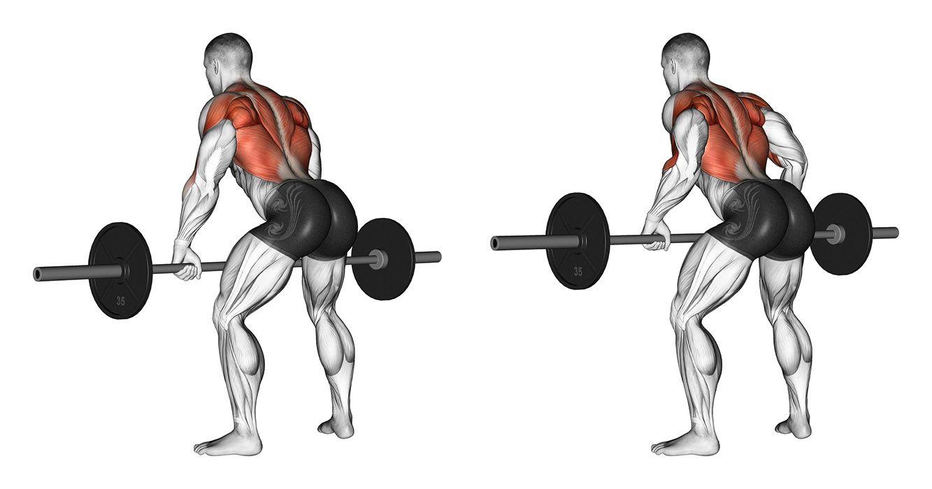 Самые эффективные упражнения для широкой спины
